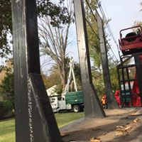 Brennan's Tree Experts Power Line Work