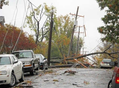 Storm Damage and NJ Tree Services.